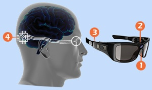 bionic-eye-custom-image-data