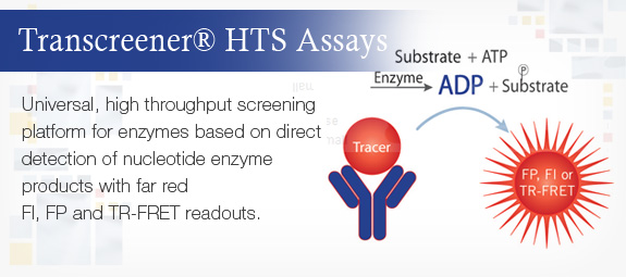 Transcreener® HTS Assays
