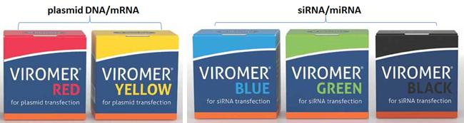 viromer_2-1